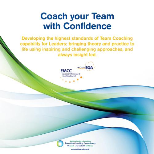Executive Resilience Coaching Programme