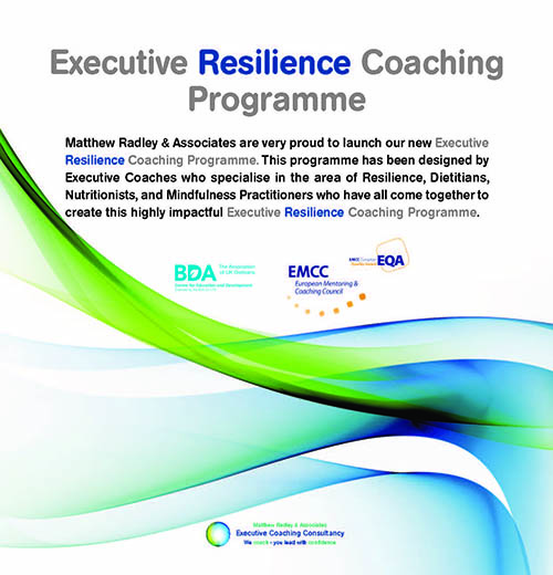 Executive Resilience Coaching Programme
